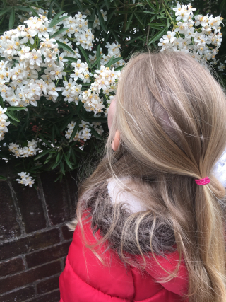 7yo smelling flowers