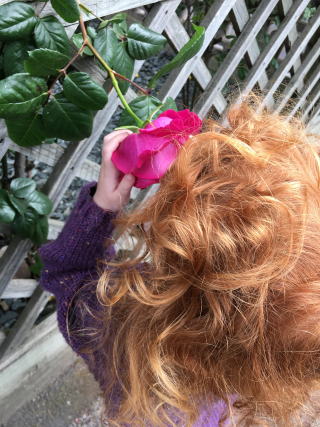 5yo smelling rose